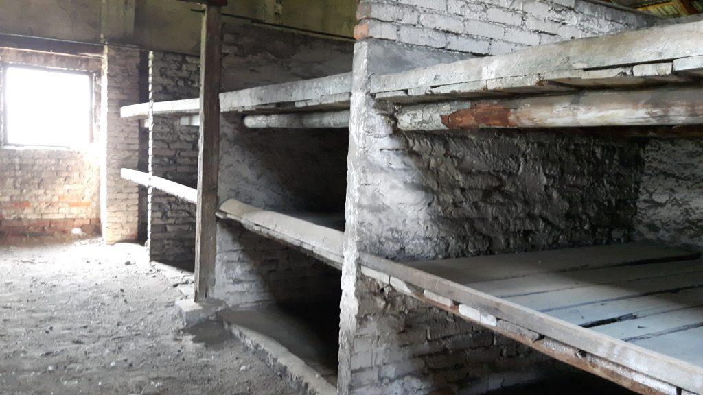 Auschwitz II – Auschwitz-Birkenau. Vangit elivät tällaisilla puualustoilla. Patjoja ei juuri ollut. Rakennukset olivat lisäksi ääriään myöten täynnä.