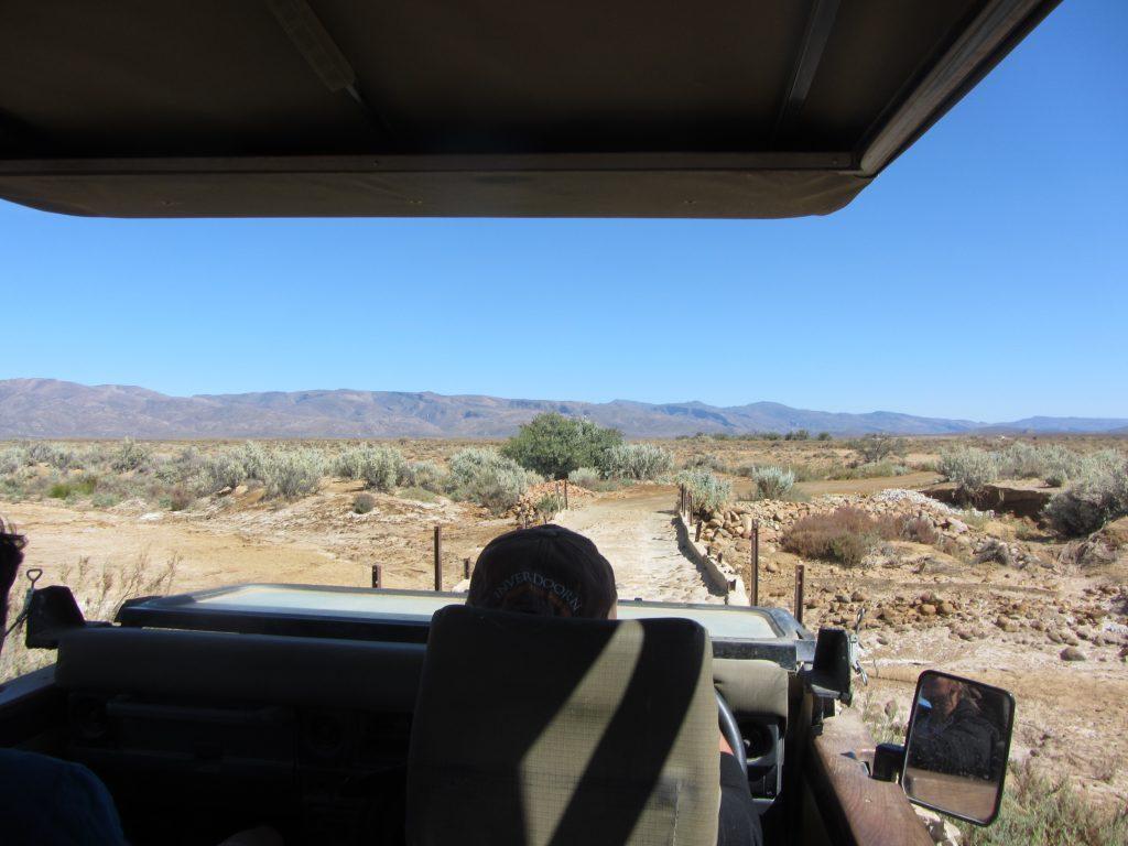 Inverdoorn safari